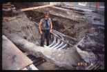 5th Ave/6th Ave Alley Duct Bank (May 6, 1987) - Ray Halvorson